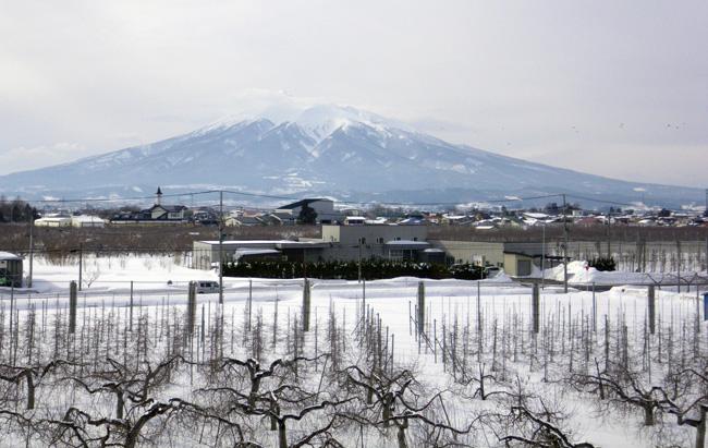 ほわんと雪景色&岩木山&ヒヨドリ♪_a0136293_1974985.jpg