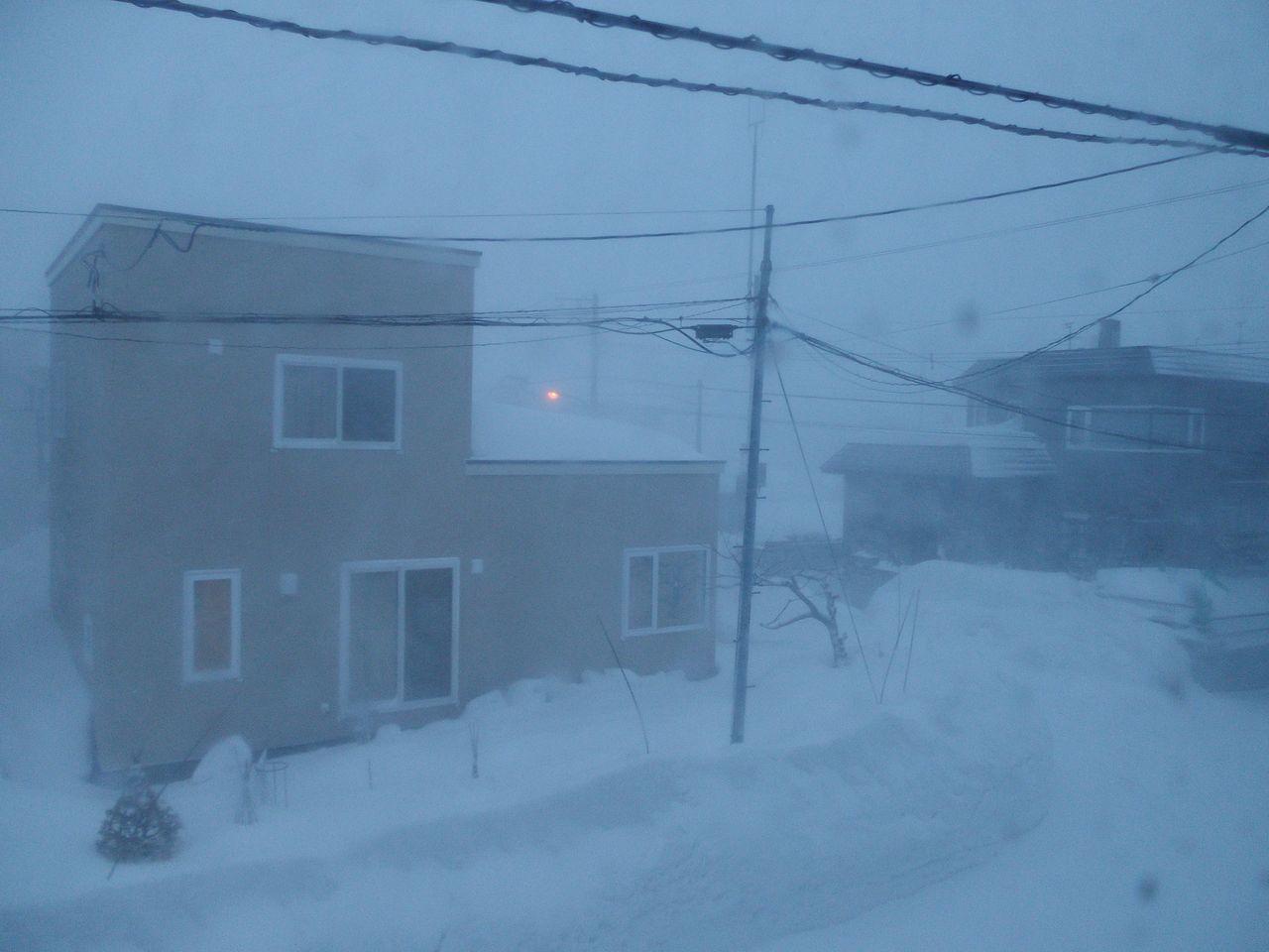 真冬日に吹雪が追加された_c0025115_22245094.jpg