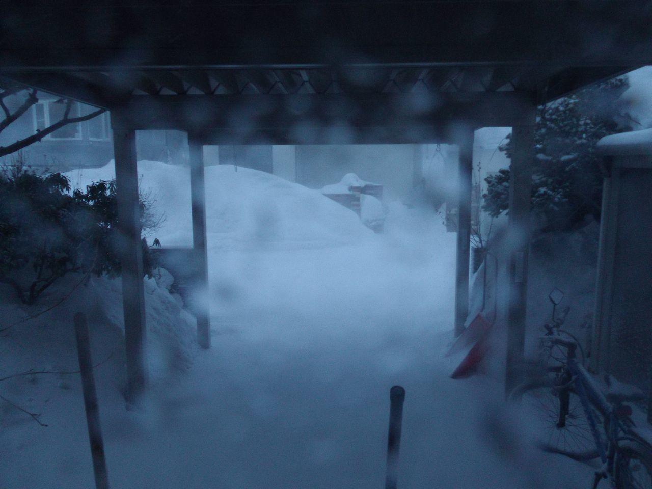 真冬日に吹雪が追加された_c0025115_22253521.jpg