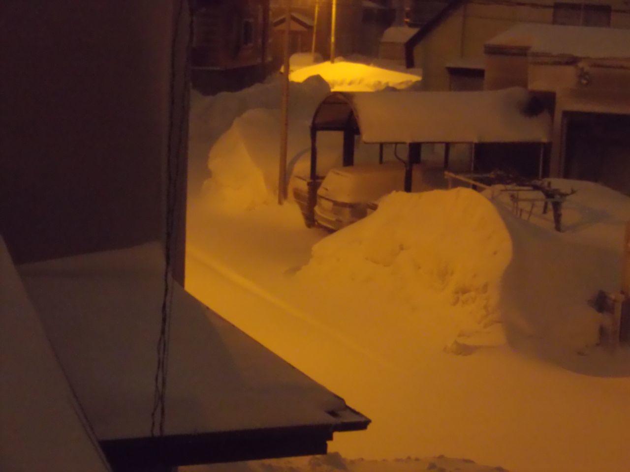 真冬日に吹雪が追加された_c0025115_22273705.jpg