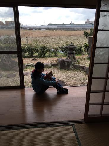 加古川市 流行の平屋 住み易いですね SOLD OUT_f0115152_18492425.jpg