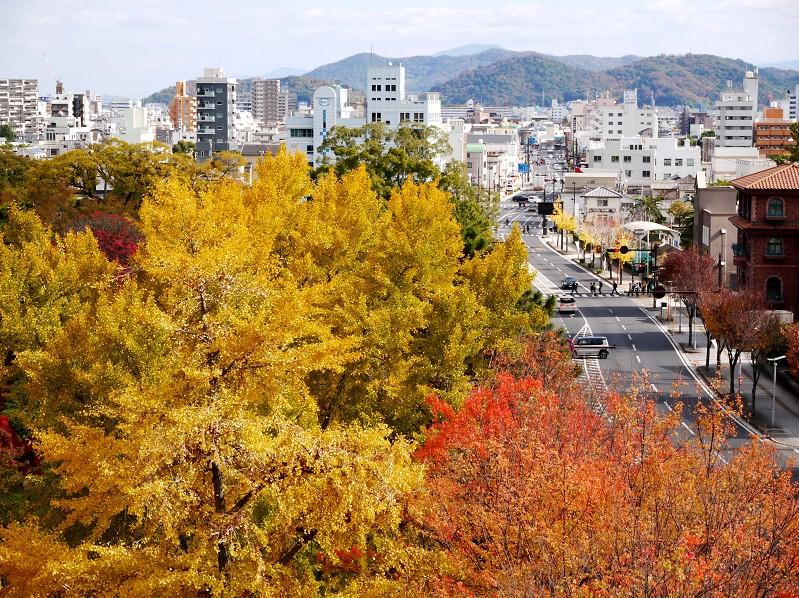 和歌山城公園にて_b0093754_2010347.jpg