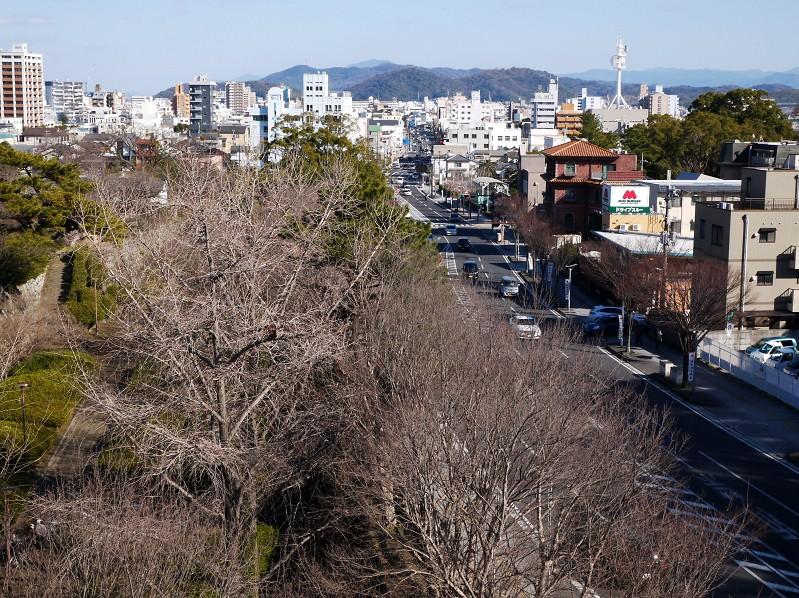 和歌山城公園にて_b0093754_2094692.jpg