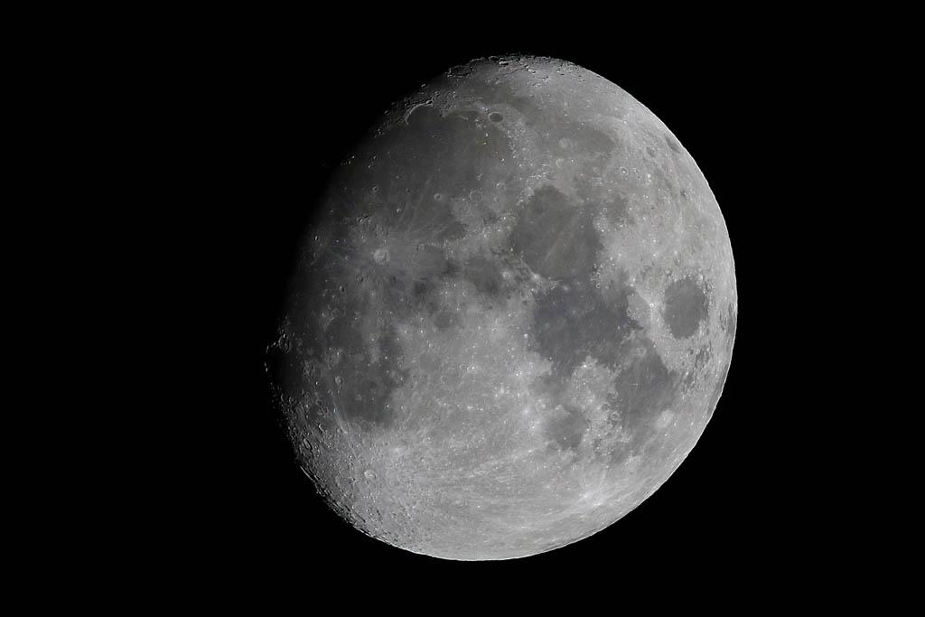 イカル/アオジ/シロハラ/ラブジョイ彗星/太陽面_b0024798_1643766.jpg