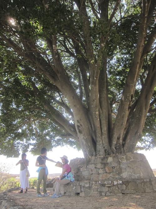 Mexico-16._c0153966_18384755.jpg