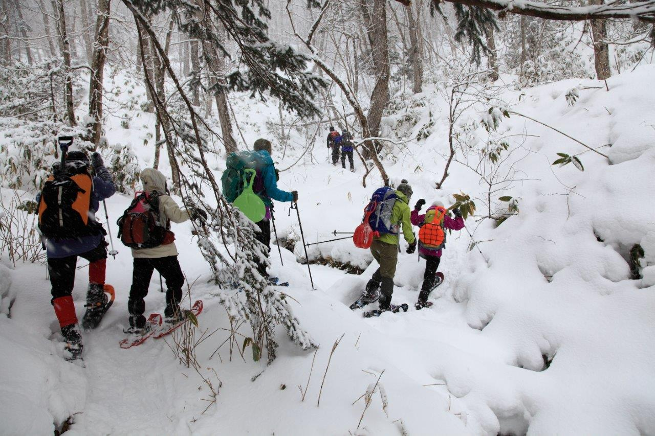 多峰古峰山、2月1日-同行者からの写真-_f0138096_1256332.jpg