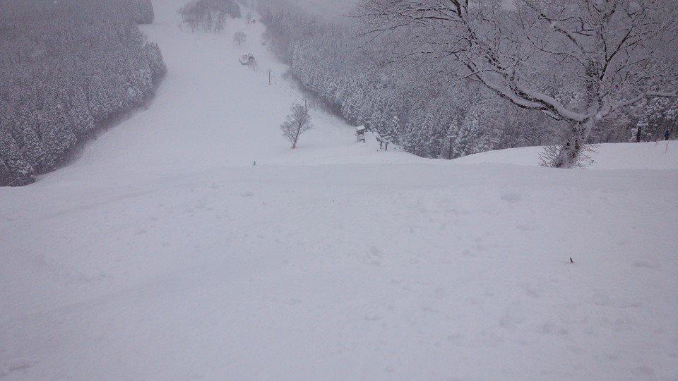 樹氷 極上powder_e0115904_15494154.jpg