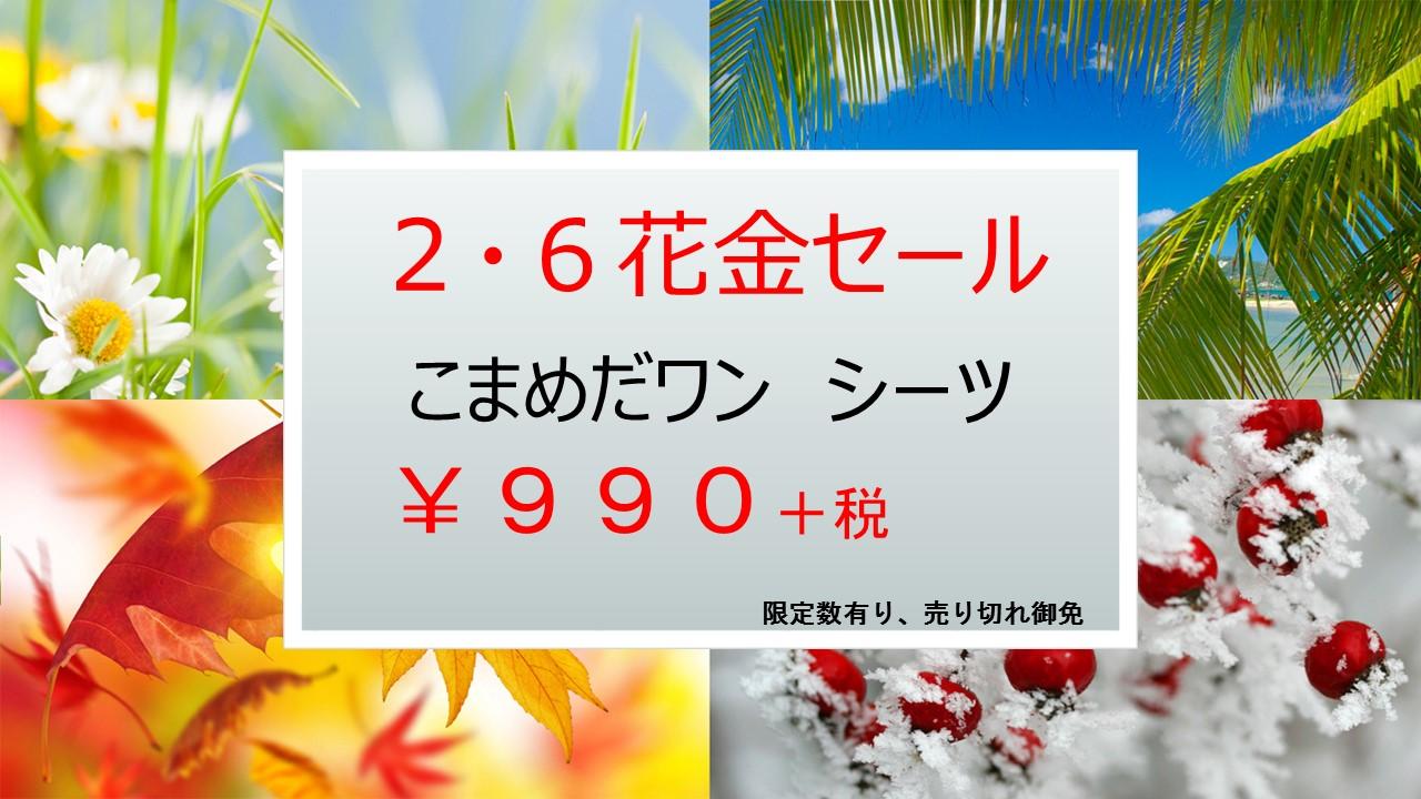 150203 2月6日(金)花金セール_e0181866_850291.jpg