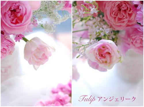 2月になりました 早春ピンクのアレンジメント 東京目黒不動前フローラフローラ花の教室1月のレッスンから_a0115684_03112333.jpg
