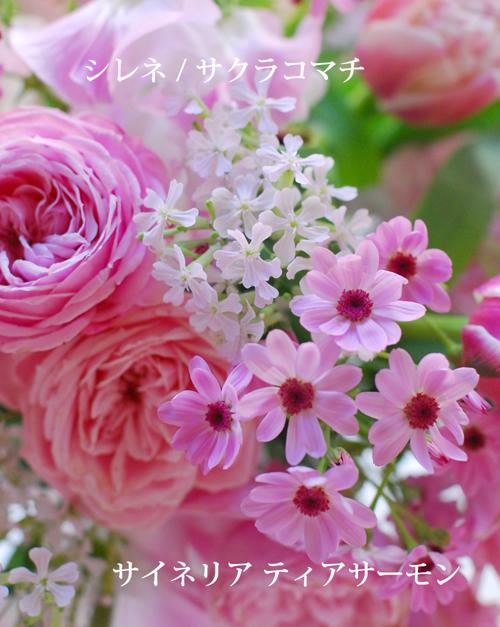 2月になりました 早春ピンクのアレンジメント 東京目黒不動前フローラフローラ花の教室1月のレッスンから_a0115684_03130382.jpg