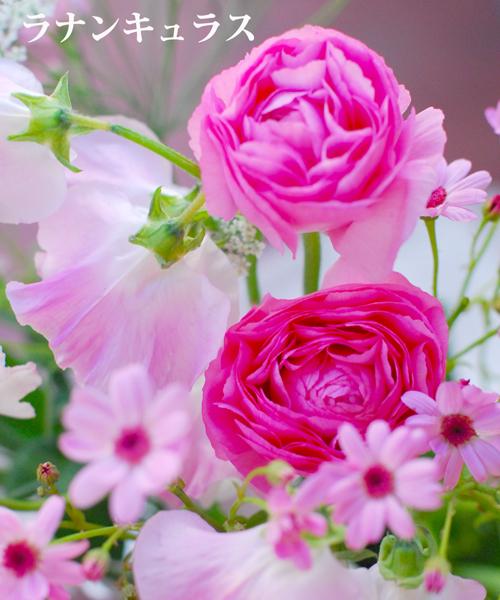 2月になりました 早春ピンクのアレンジメント 東京目黒不動前フローラフローラ花の教室1月のレッスンから_a0115684_03170021.jpg
