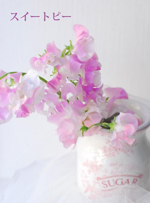 2月になりました 早春ピンクのアレンジメント 東京目黒不動前フローラフローラ花の教室1月のレッスンから_a0115684_03172529.jpg