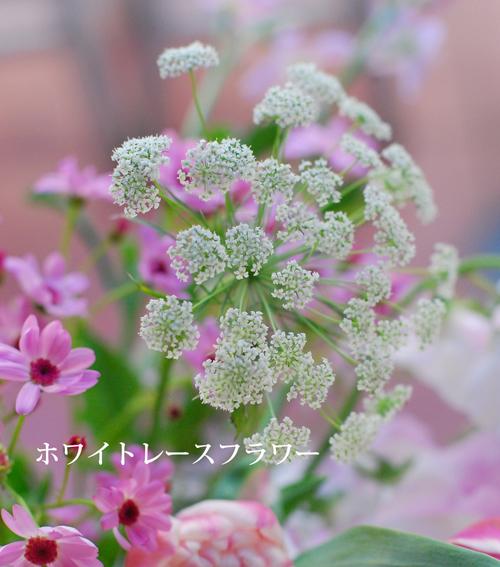 2月になりました 早春ピンクのアレンジメント 東京目黒不動前フローラフローラ花の教室1月のレッスンから_a0115684_03180552.jpg