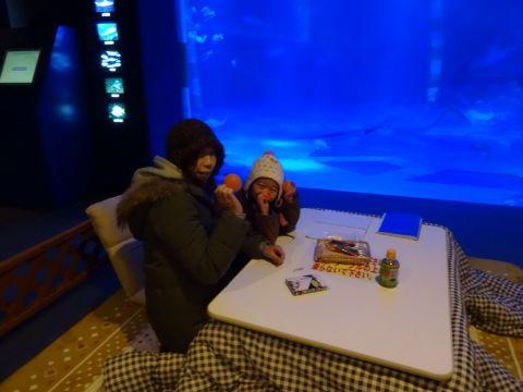 能登島水族館_f0170422_2139987.jpg