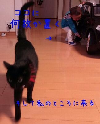 d0170555_15304146.jpg