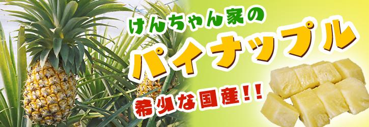 熊本産パイナップル!その2「パイナップルの花と収穫のお話」_a0254656_9274815.jpg