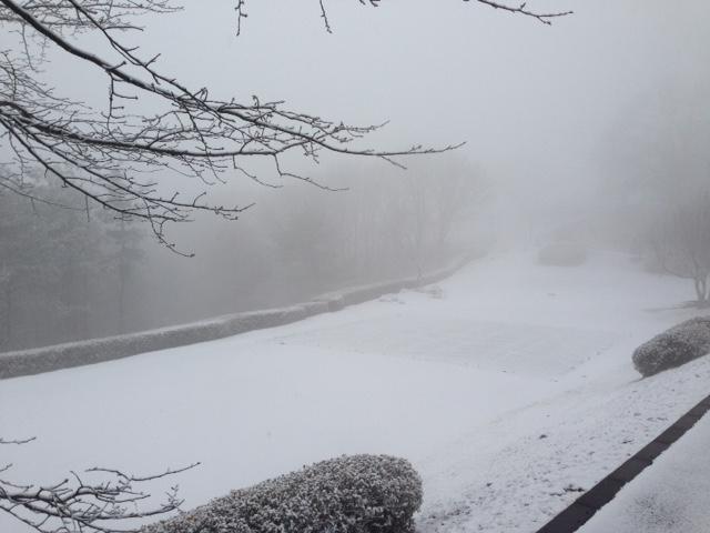 本日(2/5)は降雪によりクローズです_f0096067_8425258.jpg