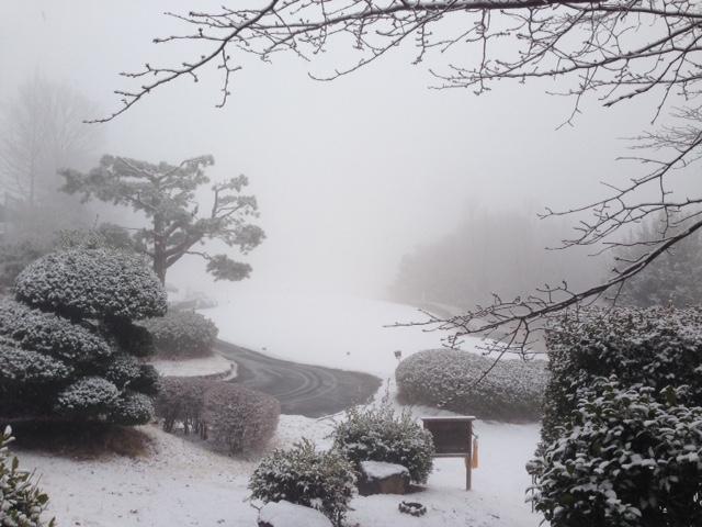 本日(2/5)は降雪によりクローズです_f0096067_8431845.jpg