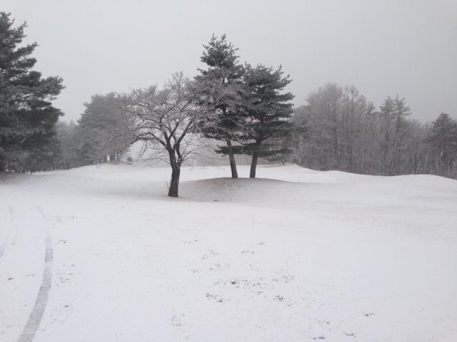 本日(2/5)は降雪によりクローズです_f0096067_8434270.jpg