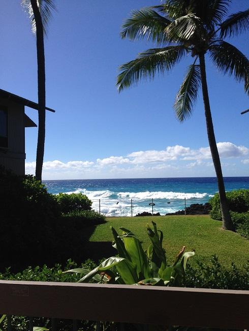 2015ハワイ島「アウトリガーアットカナロア到着!」_f0011498_18514374.jpg