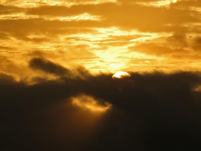 朝日を浴びて♪ (^o^)_c0049299_22372739.jpg