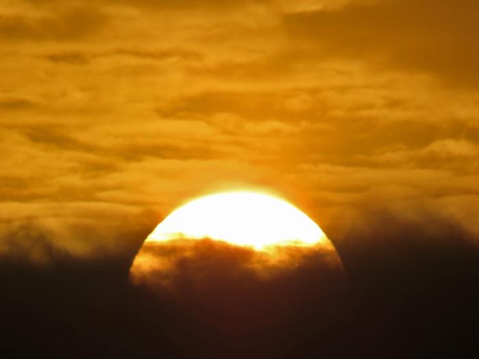 朝日を浴びて♪ (^o^)_c0049299_22373391.jpg