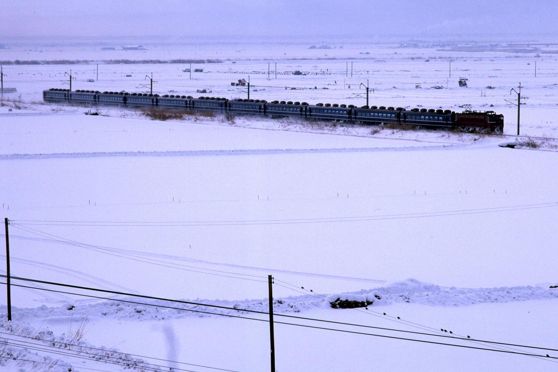 雪の朝を走る - 急行 津軽 -  _b0190710_234328.jpg