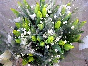 春を感じる花々_c0141652_90496.jpg