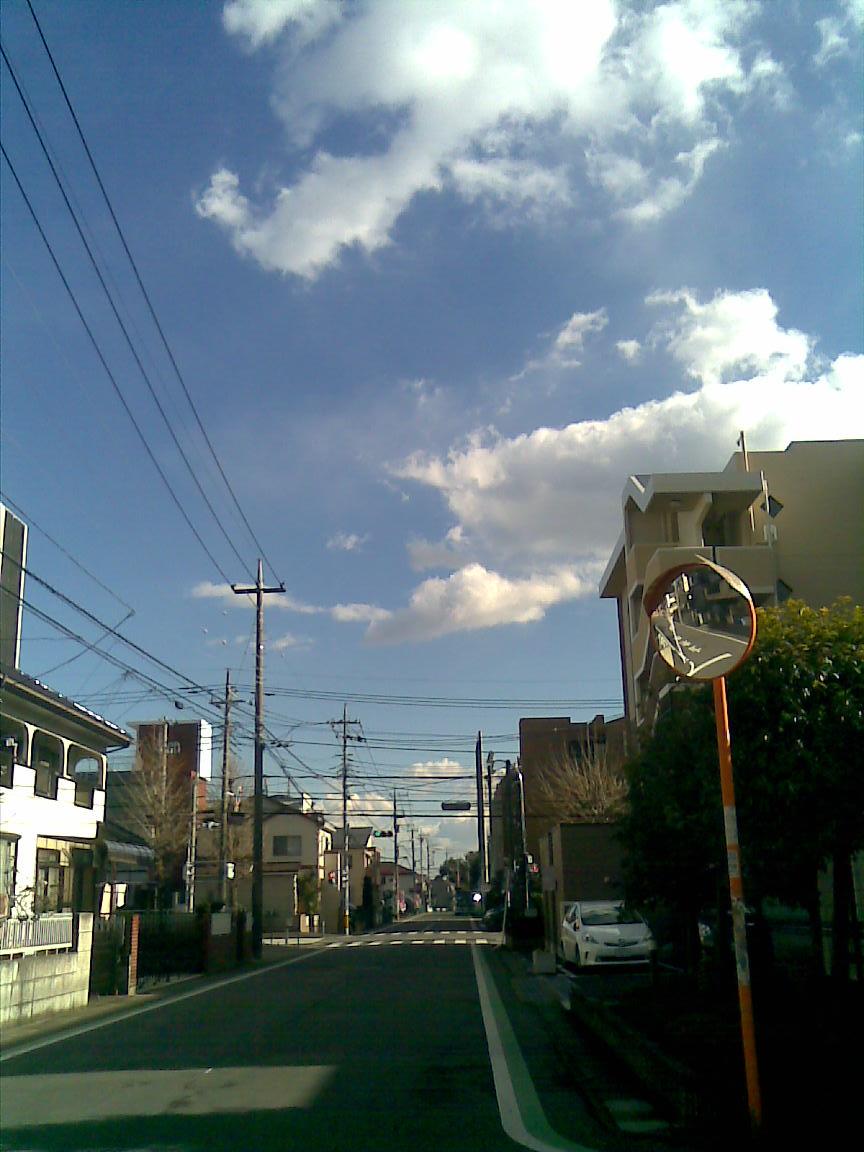 朝は相当寒かったが昼は気温上昇!_d0061678_1546714.jpg