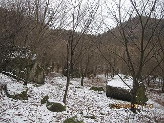 f0193521_20124510.jpg