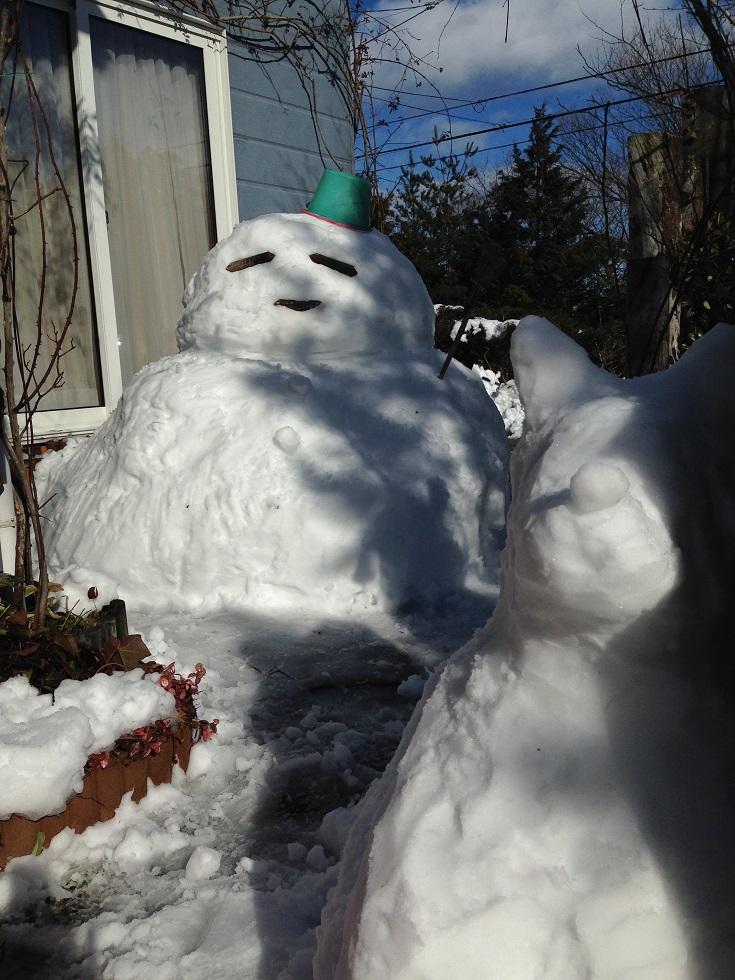 ハヤブサ 冬眠期のすごし方..._c0261447_23164026.jpg