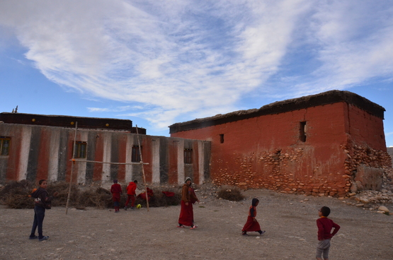 チベット文化研究会報_e0111396_145231.jpg