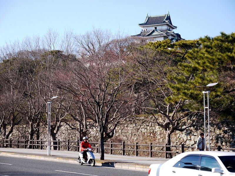 和歌山城_b0093754_16575886.jpg