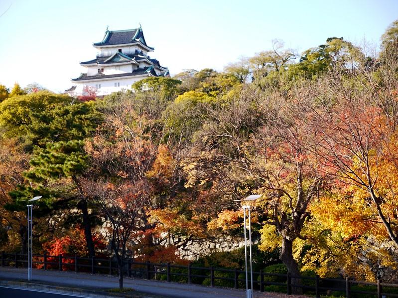和歌山城_b0093754_16593527.jpg