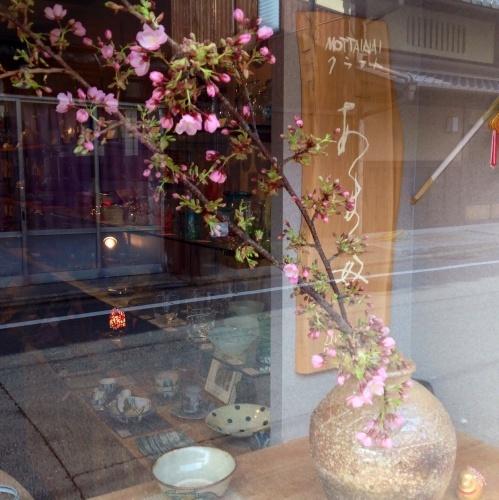 春の兆し 早咲き「伊東小室桜」_b0153663_14271515.jpg