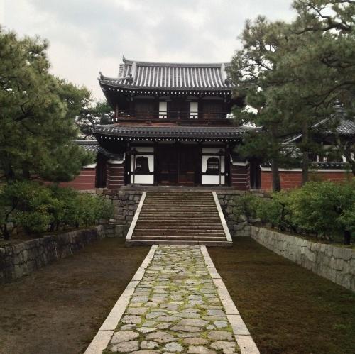 春の兆し 早咲き「伊東小室桜」_b0153663_18283037.jpg