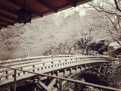 雪降る2月_c0210517_1155779.jpg