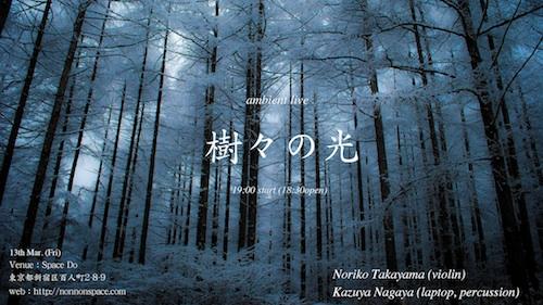 樹々の光_a0006822_0593080.jpg