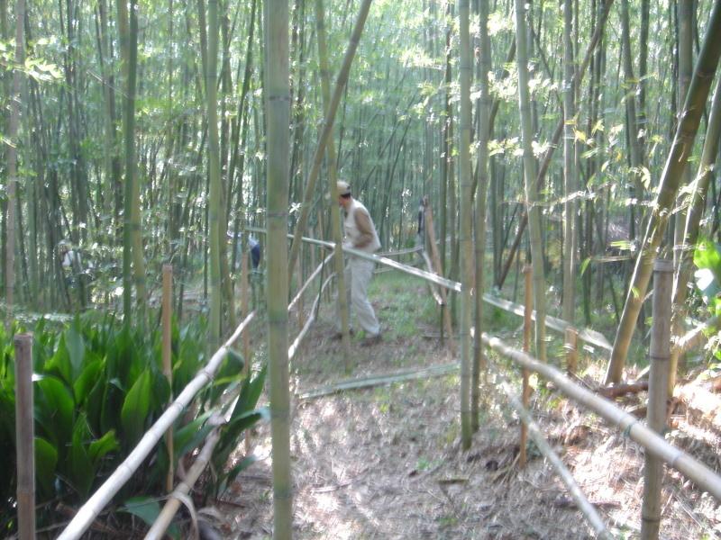 泉南広域エコ・ウォークラリーサポート      in  せんなん里海公園_c0108460_18411160.jpg