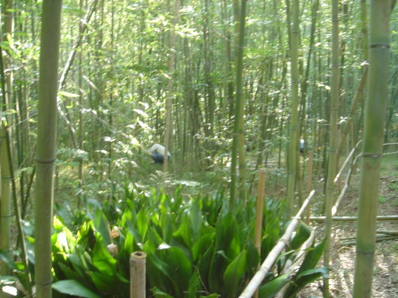 泉南広域エコ・ウォークラリーサポート      in  せんなん里海公園_c0108460_18411491.jpg