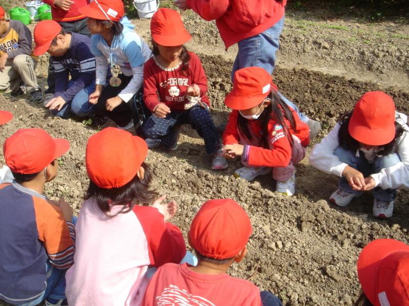 小学校遠足ダブルサポート(淡輪小学校・鳴滝小学校)  in  うみべの森 _c0108460_22190097.jpg
