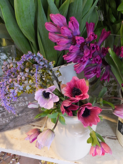 オークリーフ(キンポウゲ科の花)_f0049672_15494854.jpg
