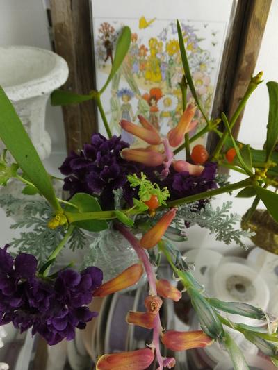 オークリーフ(キンポウゲ科の花)_f0049672_1558283.jpg