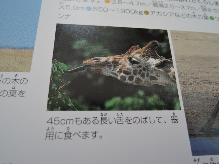 f0203788_18105449.jpg