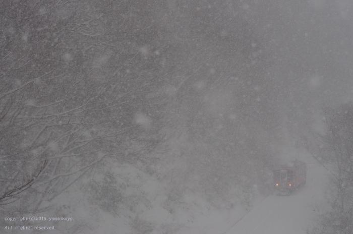 冷えた雪の朝に_d0309612_1135466.jpg