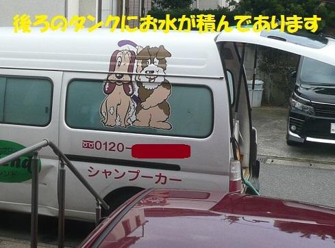 f0121712_8101224.jpg