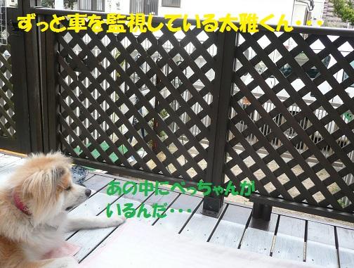 f0121712_835113.jpg