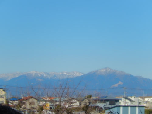 春到来?...河津桜が開花開始!_b0137932_1812115.jpg