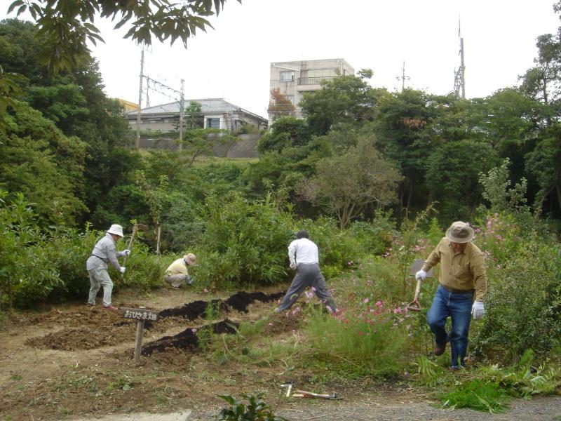 山道の階段補修  in  うみべの森_c0108460_02191604.jpg