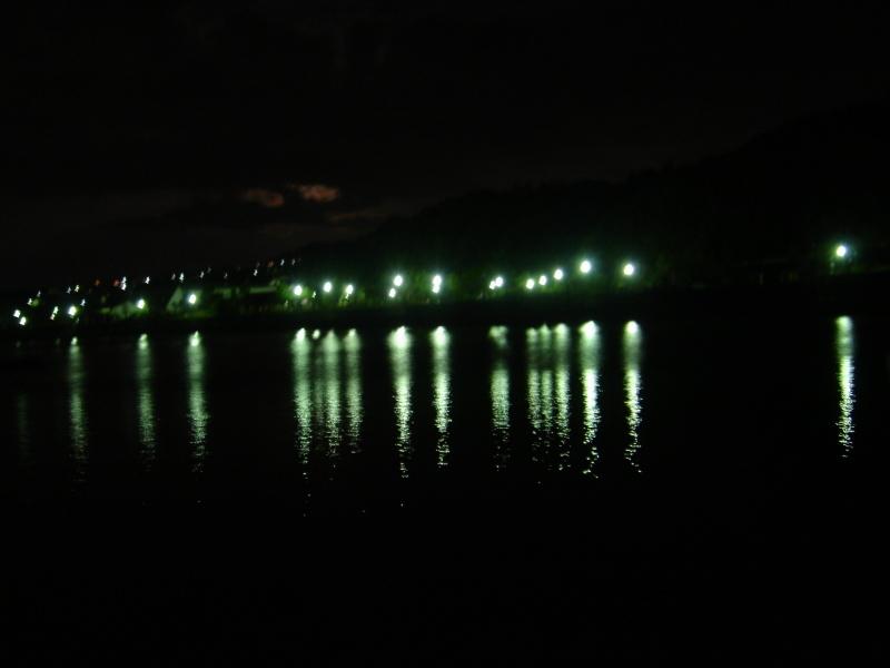 カニ放仔&ウミホタル観察会・・・せんなん里海公園_c0108460_22021332.jpg